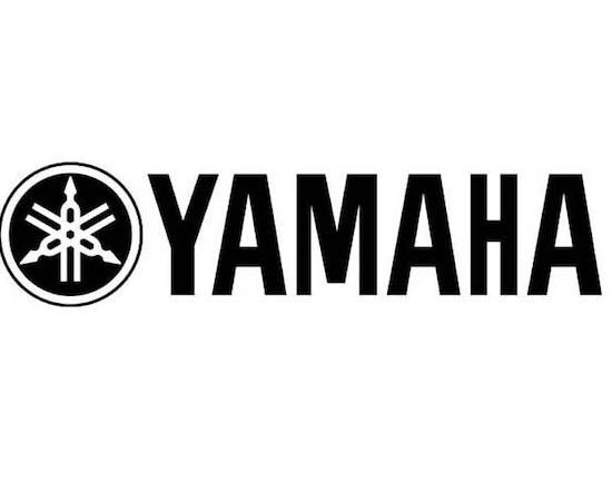 Yamaha Intakes